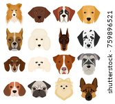 doberman  dalmatian  dachshund  ... | Shutterstock . vector #759896521