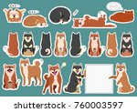 shiba inu elements set | Shutterstock .eps vector #760003597
