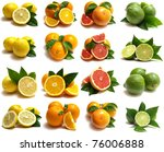 citrus for all tastes | Shutterstock . vector #76006888