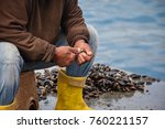 Mussels Extraction  Fisher Man