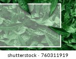 creative layout of leaves with... | Shutterstock . vector #760311919