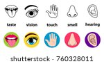 set of five human senses ... | Shutterstock .eps vector #760328011