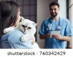 Stock photo handsome doctor veterinarian at vet clinic is examining cute cat while his owner is standing nearby 760342429