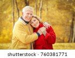 elderly couple in park on... | Shutterstock . vector #760381771