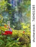 magic potion in bottle in forest | Shutterstock . vector #760401385