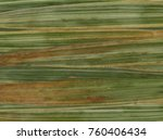 texture of grass as background  ... | Shutterstock . vector #760406434