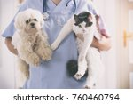 Stock photo vet with dog and cat in his hands 760460794