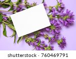 a bunch of bluebells and a... | Shutterstock . vector #760469791