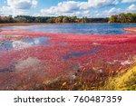 carlisle  ma  usa   october 17  ... | Shutterstock . vector #760487359