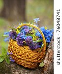 Basket With A Spring Bouquet...