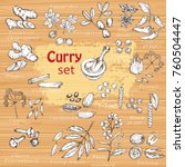 a set of curry spices. hand... | Shutterstock .eps vector #760504447