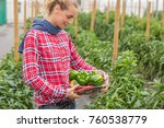 plantation in farm | Shutterstock . vector #760538779