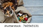 Stock photo cat near the sack with christmas gifts 760565131