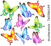 beautiful color butterflies set ... | Shutterstock . vector #760586149
