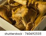raw orange organic chanterelle... | Shutterstock . vector #760692535