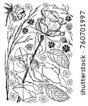 black and white vector set of... | Shutterstock .eps vector #760701997