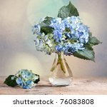 Still-Life with blue Hortensia Flowers in glass vase - stock photo