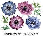 set of watercolor anemones ... | Shutterstock . vector #760877575