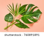 green tropical leaves on pink... | Shutterstock . vector #760891891