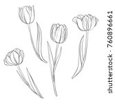 Vector Drawing Flowers Of...