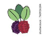 delicious raspberries fruit | Shutterstock .eps vector #760926184