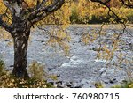 nature in different colors | Shutterstock . vector #760980715