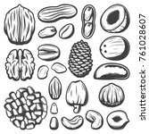 vintage organic nuts collection ... | Shutterstock .eps vector #761028607