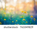 abstract floral nature... | Shutterstock . vector #761049829