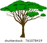 vector large african acacia tree | Shutterstock .eps vector #761078419