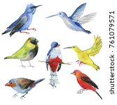 set of colorful birds.... | Shutterstock . vector #761079571