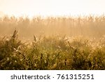 beautiful fall morning covered... | Shutterstock . vector #761315251