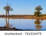 kruger national park ... | Shutterstock . vector #761316475
