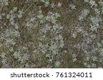 texture of grass and moss | Shutterstock . vector #761324011
