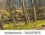 view of the forest covered with ... | Shutterstock . vector #761327875