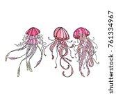 octopus vector illustration.... | Shutterstock .eps vector #761334967