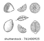 hand drawn lemons with branch ... | Shutterstock .eps vector #761400925