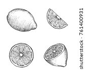 hand drawn lemons with branch ... | Shutterstock .eps vector #761400931