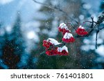 winter scene of red rowan... | Shutterstock . vector #761401801