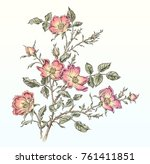 flower drawing in tattoo style | Shutterstock . vector #761411851