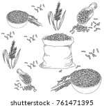 rice seed drawing  jasmine rice | Shutterstock .eps vector #761471395