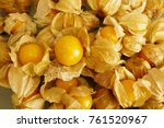 Cape Gooseberry  From Top View  ...