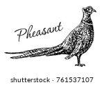 vector antique engraving... | Shutterstock .eps vector #761537107
