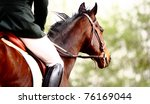Stock photo dressage horse 76169044