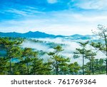 pine forrest in the hill at the ...   Shutterstock . vector #761769364