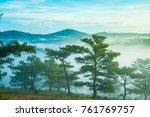 pine forrest in the hill at the ...   Shutterstock . vector #761769757