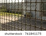 close up steel wire mesh fence...   Shutterstock . vector #761841175