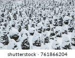 selective focus winter on snow... | Shutterstock . vector #761866204