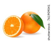 juicy orange  delicious fruit... | Shutterstock .eps vector #761909041