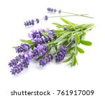 bunch of lavender flowers on a... | Shutterstock . vector #761917009