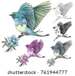 bird  background  vector. | Shutterstock .eps vector #761944777